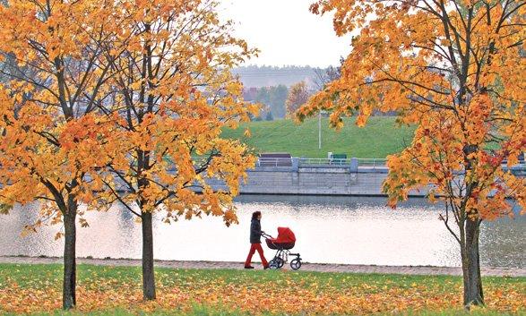 Погода: Краткая климатическая характеристика ноября