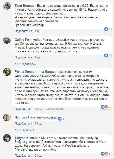 """""""Целая отара"""": киевлян возмутило нашествие ромов в метро"""