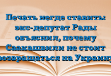 Печать негде ставить: экс-депутат Рады объяснил, почему Саакашвили не стоит возвращаться на Украину