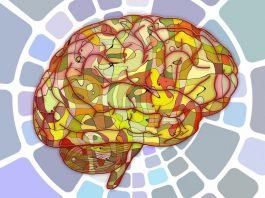 Все дело в отделе мозга: медики назвали источник зарождения депрессии
