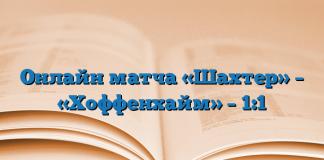 Онлайн матча «Шахтер» – «Хоффенхайм» – 1:1