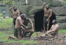 история, антропология, человечество