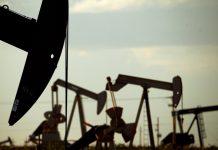 ОПЕК и Россия отвергли призыв Трампа немедленно увеличить добычу нефти