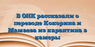 В ОНК рассказали о переводе Кокорина и Мамаева из карантина в камеры