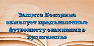 Защита Кокорина обжалует предъявленные футболисту обвинения в хулиганстве