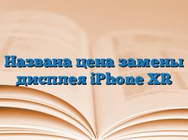 Названа цена замены дисплея iPhone XR