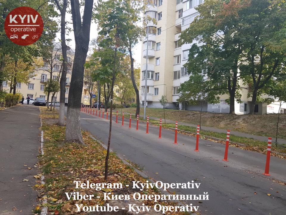 Грузовые автомобили регулярно получают повреждения из-за дерева на улице Смоленской в Киеве (фото) 1