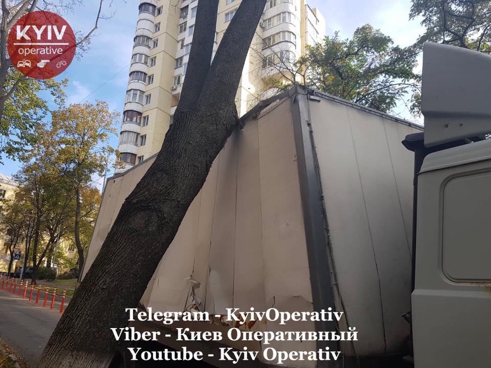 Грузовые автомобили регулярно получают повреждения из-за дерева на улице Смоленской в Киеве (фото) 2