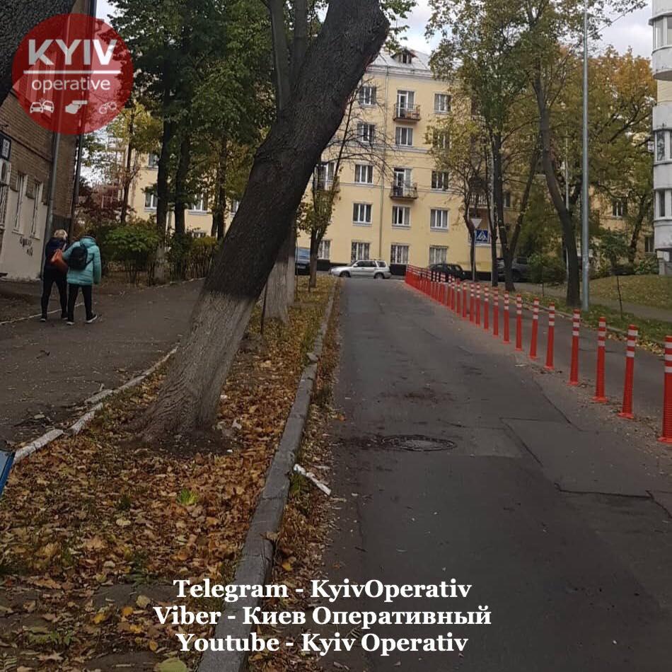Грузовые автомобили регулярно получают повреждения из-за дерева на улице Смоленской в Киеве (фото) 3