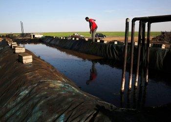 Пентагон назвал получателя доходов от добытой в Сирии нефти :: Политика :: РБК