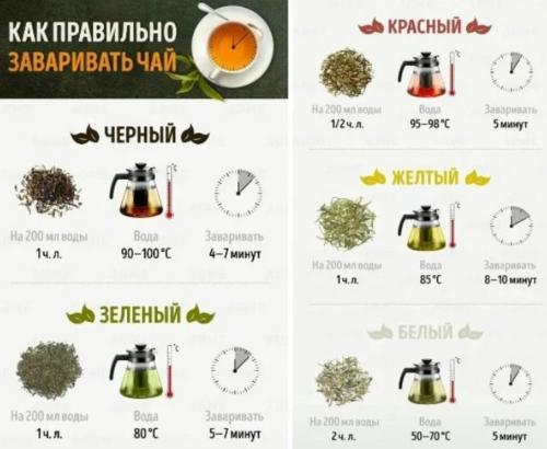 Как правильно надо заваривать чай и не навредить здоровью, рассказал эксперт 1