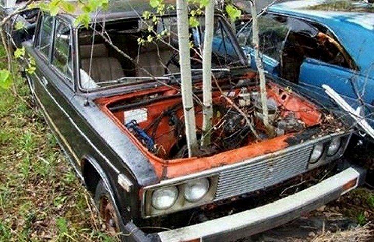 В Канаде нашли «кладбище» автомобилей Lada 2