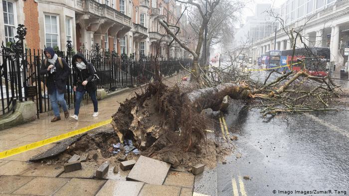 Ураган в Лондоне