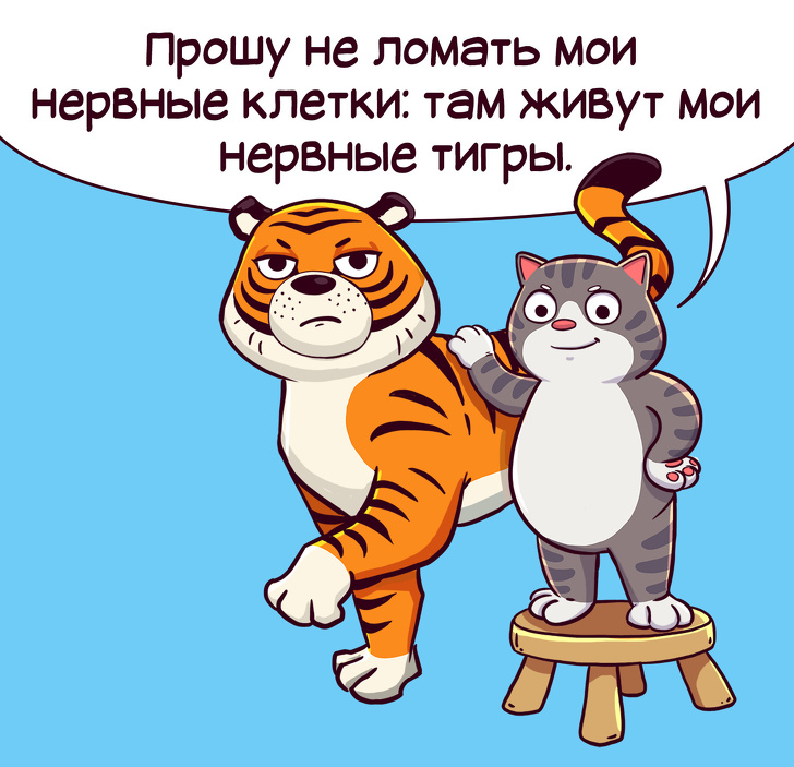 Правила жизни кота Семена (комикс) 5