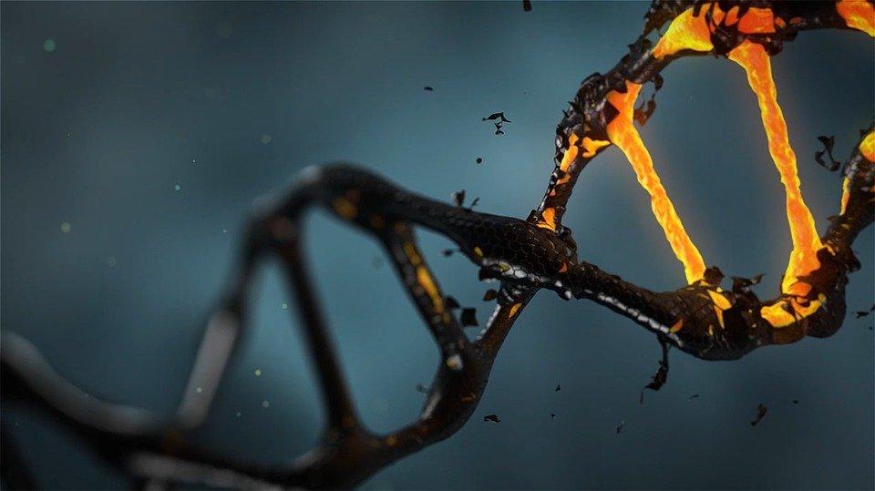 ДНК человек аномалия медицина здоровье (новости): Человеческий организм станет неуязвимым к болезням: эксперты рассказали, как можно редактировать ДНК – 20.05.2019