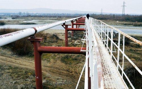 «Роснефть» возложила на «Транснефть» расходы по ущербу за «грязную» нефть :: Бизнес :: РБК